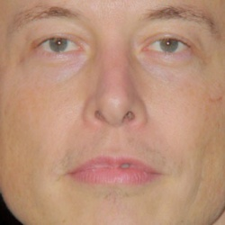 Elon Musk Height In Feet Cm How Tall